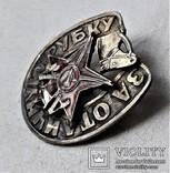 Знак За Отличную Рубку, для кавалерии и конной артиллерии, копия, №248, фото №12