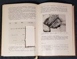 Атлас анатомо-эндокринологических половых аномалий развития, фото №10