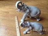 Слоны. ЛФЗ. 2 шт., фото №2