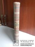Некрасов Н А Избранные стихотворения 1949 иллюстрации Шмаринова, фото №13
