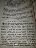 1789 Магазин натуральной истории, фото №8