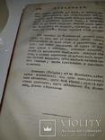 1789 Магазин натуральной истории, фото №11