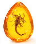 Кулон с скорпионом (имитация янтаря с инклюзом), фото №2