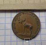 5 копейки 1922 г. Вторая Государственная шорно-футлярная и чемоданная фабрика., фото №2
