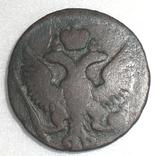 Денга 1743 (15 перьев) фото 2