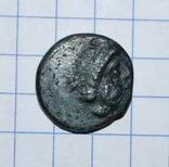 Фанагория дихалк II в.до.н.э., фото №5