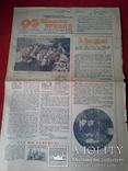 Пионерский правда 1951 год, фото №2