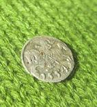 Денарій, 1554 рік, Сигізмунд II Август., фото №4