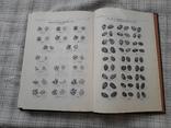 Русские монеты от Ивана Грозного до Петра Первого. А. С. Мельникова (3), фото №3