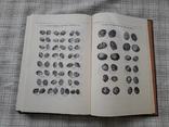 Русские монеты от Ивана Грозного до Петра Первого. А. С. Мельникова (3), фото №8