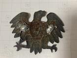 Орел, фото №3