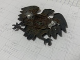 Орел, фото №4