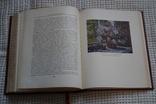 """Книга""""История Москвы"""".Том-6.(Тираж-10000).1958 год., фото №9"""