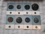Монеты Городов Античного Причерноморья., фото №5
