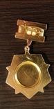 Почетный знак ДОСААФ 50 лет, фото №3