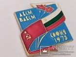Значок ДКСМ ВЛКСМ София 1973, фото №2