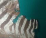 Шкура зебри Південна Африка, фото №8