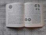 Очерк о первой меди. М.М. Максимов М.Б. Горнунг, фото №5