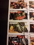 Лист ягоды, фото №4