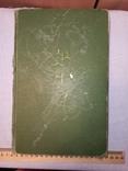 Размножение садовых растений. Х. Гартман, Д. Кестер. Перевод американ. издания 1959 г., фото №3