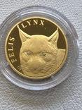 Казахстан 500 тенге 2007 год золото 999' 7,78 грамм бриллианты, фото №2