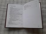 Монетное дело и монетное обращение Ганджийского Эмирата Шаддадидов (сер.Х-ХI вв.), фото №5