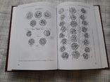 Монетное дело и монетное обращение Ганджийского Эмирата Шаддадидов (сер.Х-ХI вв.), фото №6
