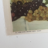 Старинная открытка Италии. Шелкография., фото №5