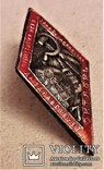 Знак 7 годовщина Октября, СССР, копия, №34, 1924 год, фото №13