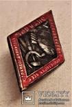 Знак 7 годовщина Октября, СССР, копия, №34, 1924 год, фото №2