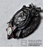 Знак Части Особого Назначения Украины, ЧОНУ, копия, 1918г, №0141, фото №13