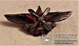 Знак ОДВФ Членский, Общество Друзей Воздушного Флота, копия, 1923-25гг, №031, фото №3