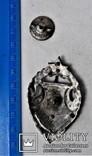 Знак Советские Петроградские курсы финских Красных командиров, копия, 1918-22гг, №841, фото №5