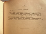 Египет В.Андреевский СПб. 1886г., фото №9