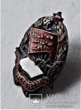 Знак Отличник народного просвещения Наркомат просвещения БССР, копия, 1944-46гг, №411, фото №11