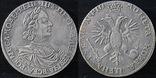 Рубль 1718 год Петр 1 год написан буквами Орел. копия монеты., фото №2