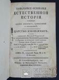 Начальные основания естественной истории. В. Севергин. 1791 - 1794 года., фото №8