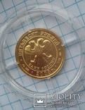 50 рублей 2003 год 7,78 грамм 999 пробы, фото №8