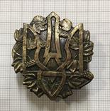 Знак с Тризубом, копия., фото №2