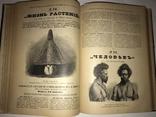 1897-1898  Известия Книжных Магазинов М.О. Вольфа. Комплект., фото №7