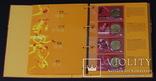 10 Юань 2008 Полный Набор Олимпиада 40шт., Китай UNC, фото №8