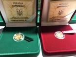 2 Гривны Скифское золото Кабан Золото 999.9 пробы. / Скіфське золото Кабан 2009 г., фото №3