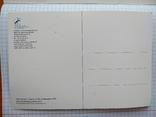 Почтовая открытка фехтование, 100 лет международной федерации фехтования, фото №3