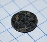Пантикапей.  Бычек  ПАN    IV в.до.н.э., фото №8