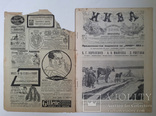 Журнал Нива №23 1914 г, фото №3