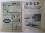 Журнал Нива №22 1914, фото №3
