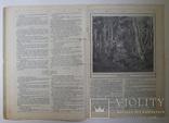 Журнал Нива №22 1914, фото №6