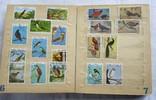 Почтовые марки флора фауна, фото №6