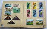 Почтовые марки флора фауна, фото №8