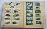 Почтовые марки флора фауна, фото №9